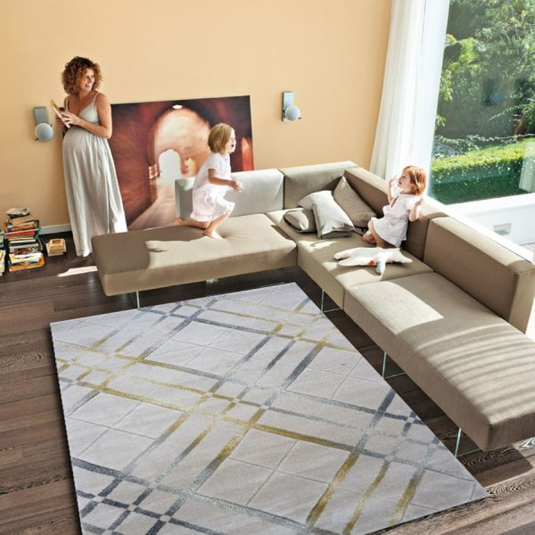 Bright Living Room Sectional Italian Sofas Glass Wall White Fur